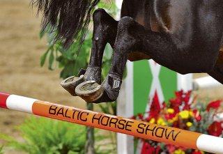 baltic-horse-show